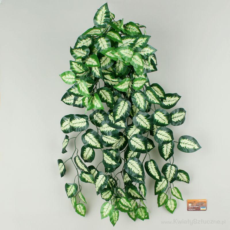 Diffenbachia B093 Sztuczne Pnącze Sztuczne Kwiaty I Rośliny